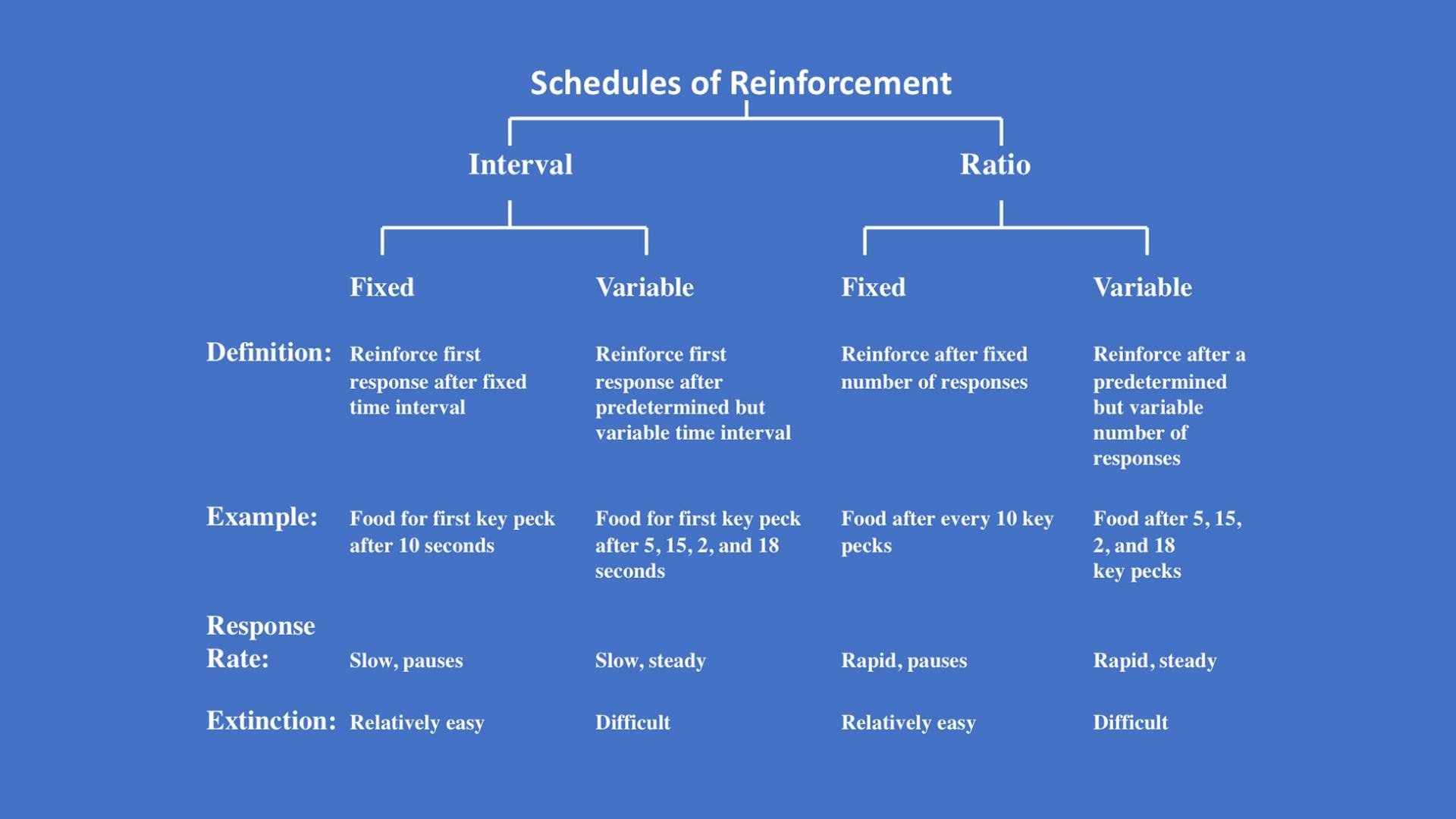 Schedules of Reinforcement Image