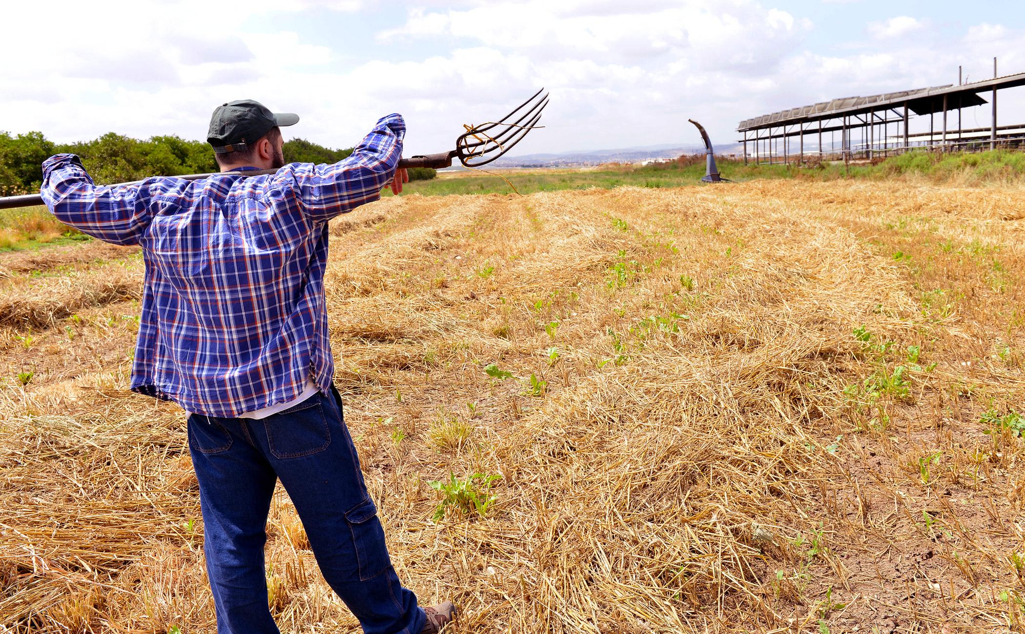Farmer standing in a field.